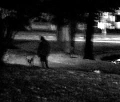 Nocturn. (candido baldacchino) Tags: camera digital cybershot sonycybershot nocturn candidobaldacchino