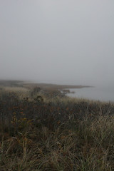 Waquoit Bay (c.buelow) Tags: massachusetts dune heath falmouth heathland southcapebeach vineyardsound falmouthma barrierbeach waquoitbay chrisbuelow waquoit wbnerr waquoitbaynationalestuarineresearchreserve dryoptera