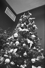 Navarik kids' Christmas - the tree (Derek K. Miller (1969-2011)) Tags: christmas xmas blackandwhite bw tree film vancouver kodak christmastree christmasparty xmastree xmasparty bw400cn navarik