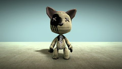Annie Ok as a LittleBigPlanet Sackboy avatar (Annie Ok) Tags: cat 3d avatar avatars videogames gaming virtual videogame playstation mmo ps3 playstation3 metaverse lbp mediamolecule annieok littlebigplanet sackboy sackgirl multiplayeronlinegaming