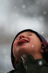 cj.snow (tjpanfil) Tags: snow canon dof kitlens explore cj dpp snowday explored xti 400d canon400d canonef75300mmf456iii pfogold pfosilver freewarephotoeditors
