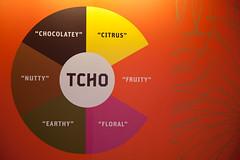 TCHO Chocolate Flavor Wheel
