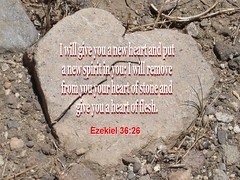 Inspirational Bible Verses (Isolino) Tags: god jesus christian bible inspirational scripture verses testament ezekiel3626 inspirationalbibleverses httpwwwinspirationalbibleversescom