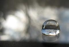Spiegelung / reflection