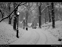 Central Park covered in snow (Natasja ) Tags: park christmas street new york city nyc newyorkcity winter blackandwhite bw usa white snow ny newyork black weather america canon eos holidays december path centralpark manhattan diary central zwart wit thebigapple thediary 40d canoneos40d