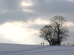 (bernd obervossbeck) Tags: schnee winter light snow nature licht natur himmel sauerland supershot mywinners