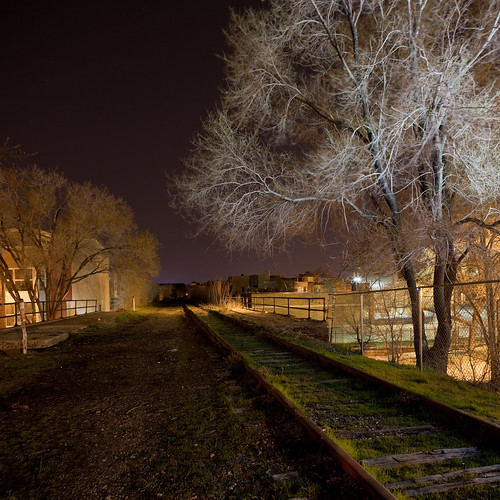 The Bloomingdale Trail at Night