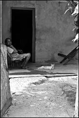 LA SEORA Y SU GATA (joferluna / Fernando Luna) Tags: canon venezuela margarita lightroom fotografosvenezolanos photoscape eos1000d fernandoluna