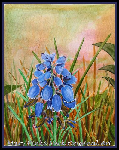 Grape Hyacinth Watercolor