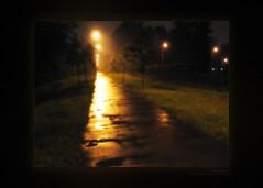 Dream World (Dmitriy Kraynev) Tags: road park lighting trees light mist art nature grass rain fog night forest way landscape miracle magic gothic dream dot fairy fantasy romantic after mystic mystique
