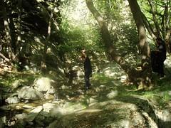 Water (sotoz) Tags: water falls kozani kataraktes velvento metoxi aliakmonas belbento
