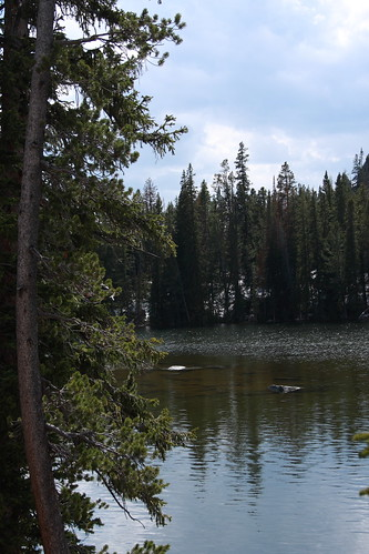 Montana June 208 040