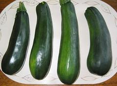 Zucchini 03