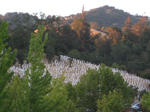 Crosses on Hillside in Lafayette
