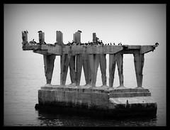 Ruinas (mjoksiglandi_raudi) Tags: sea blackandwhite bw blancoynegro birds puerto muelle mar paseo ruinas pajaros valparaso baron valpo blackwhitephotos anawesomeshot