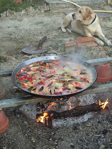 Paella and Tabasco