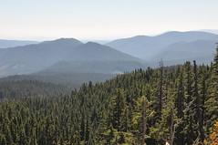 Mount Hood (The Impression That I Get) Tags: oregon mounthood mounthoodnationalforest