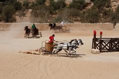 Chariot Race 02 (Chris Haigh) Tags: horses speed action jordan 2008 jerash romans chariots chariotrace hashemitekingdom