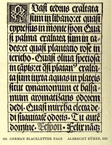 12- Escritura gotica alemana en negritas de Durero 1515