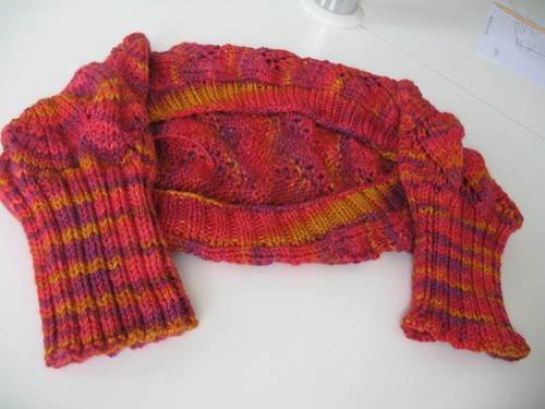 Dream In Color Shrug