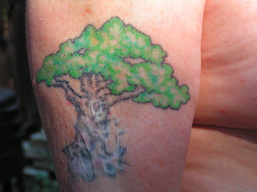 tree tattoo over scar