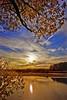 sun under branches (-liyen-) Tags: autumn lake toronto ontario canada water d50 nikond50 explore naturalframe portcredit moac naturesfinest sunsetish bigmomma interestingness172 cy2 challengeyouwinner anawesomeshot colorphotoaward aplusphoto vosplusbellesphotos