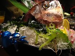 Tachikoma with fresh fish