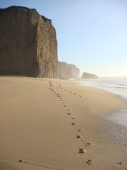 MartinsBeach_2007-108 (Martins Beach, California, United States) Photo
