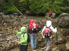 Skookum 028 (Nomad Kris) Tags: sealife rapids skookumchuck tidal sunshinecoast egmont