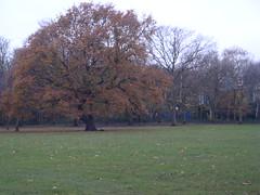 London 2008 017