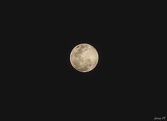 Full moon (mr_fairuz) Tags: malam shah alam