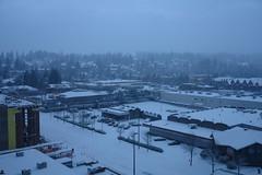 let it snow 110 (Chen Yang) Tags: washington washingtonsquare r1 letitsnow seattlewa bellevuewa