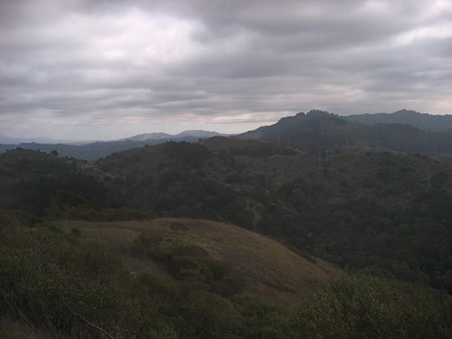 Views from Tilden Park