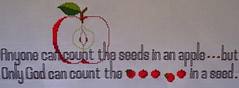 Seeds (ChinaLeft) Tags: apple crossstitch stitch embroidery appleseeds