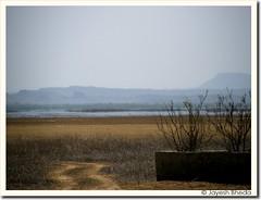 Chhari Dhand, Kutch (by Jayesh Bheda)