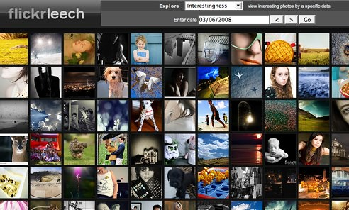 Flickr Leech beta (square thumbs) (by AndrewNg.com)