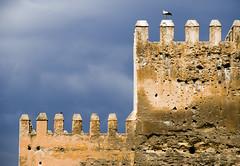 (NikAt) Tags: sky bird fort morocco fez maroc 2008 marruecos stork fes المغرب d80 فاس