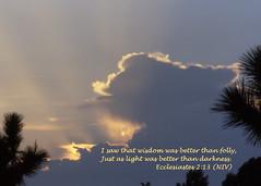 sunbeams (AgentZ92505) Tags: tree art clouds christian mostinteresting bible inspirational sunbeam scripture verses crepuscular ecclesiastes inspiks agentz worldwideopen inspiredbyhim agentz92505
