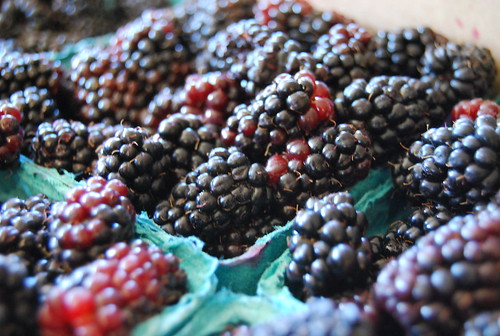 fresh marionberries from the farmers market