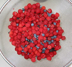 Raspberries & Blueberries 03