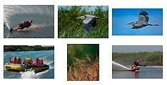Nikon D50 plus Nikkor 70-300 VR photos by Kim Kaila
