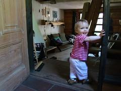 schody niu-niu! (p.lorenc) Tags: lilla lorencowie