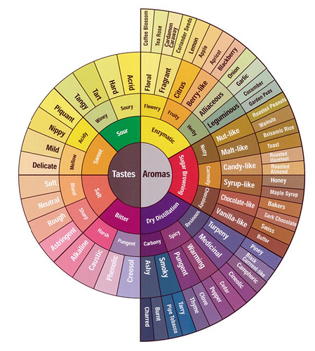 coffee tasting flavor wheel by wholelattelove.com / visual think map