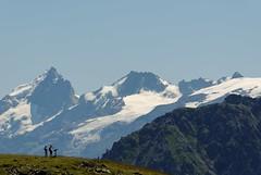 La Meije (3983m) et le Rateau (3809m) (< Lj >) Tags: mountains alps nature alpes landscape nikon natura glaciers summit d200 paysage paysages ecrins montagnes chamrousse sommet meije rateau massifdesecrins