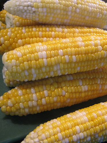 MN sweet corn
