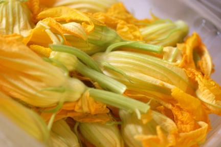 Farmer's Market Zucchini Flowers web