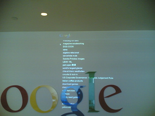 Google HQ Sydney: Dog Cock
