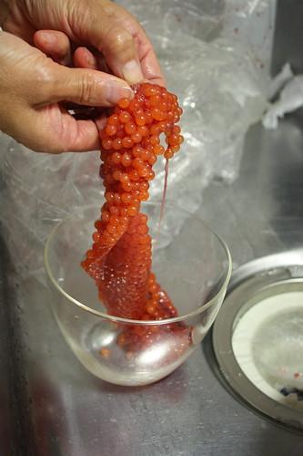saumon roe