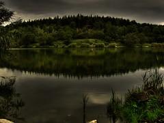 Átlagos őszi nap / just another autumn day (Szabolcs Kis-Vörös) Tags: autumn lake nature water landscape hungary sanyo természet ungarn hdr tó pécs xacti photomatix ősz 5xp fünfkirchen víz malomvölgy pecuh