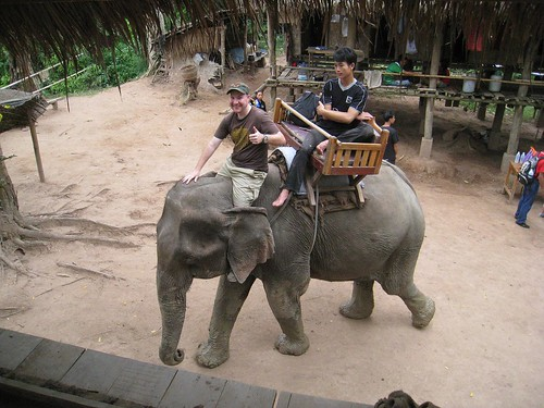 A thumb's up after my first elephant ride